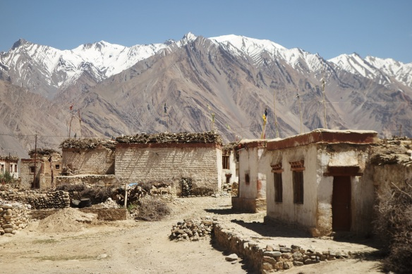 These are the typical Ladakhi houses. The animals lives in the first story, while the humans lives up top.