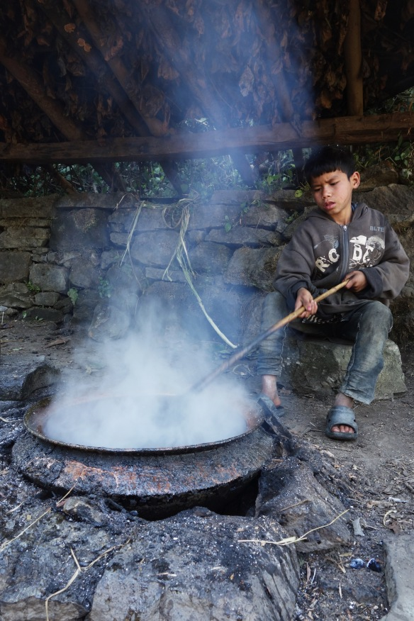 When I arrived they were boiling surgar cane juice to make a very sweet brown sugar which they served of me on a leaf.