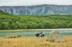There was wonderful camping almost every night on the Carretera Austral, Patagonia 2015.