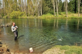 Catching a trout.