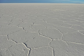 The hexagons of salt were so defined, we assume it has something to do with how the water evaporates because every rainy season the salt flats turn into a lake.