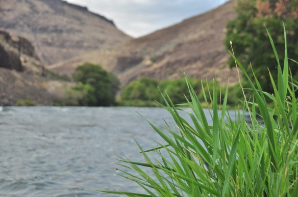 The Deschutes river.