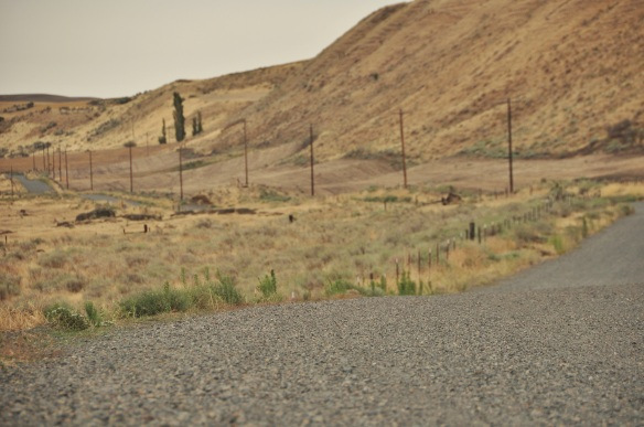 We were so excited to find a whole network of gravel country roads wherever we went.