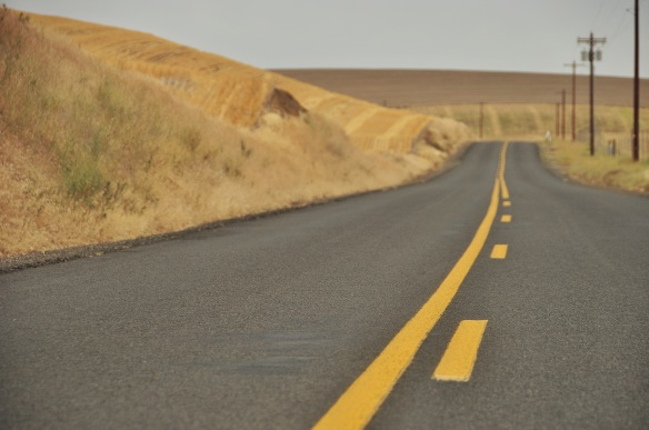We spend half the time on gravel, and the other half on amazingly smooth country roads where a car only passed every hour or so. Talk about the best of both worlds; paved and empty!